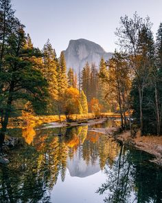 Morning reflections of the Yosemite Valley. By Nathan Lee, : EarthPorn National Photography, Nature Photography, Travel Photography, Yosemite Valley, Seen, Ways To Travel, Travel Ideas, Travel Tips, Travel Destinations