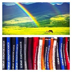 Discover the variety of colors from Schockemoehle Sports at mannEQUIn! Equestrian Style, Rainbow Colors, Squares, Fresh, Sports, Instagram Posts, Bobs, Rainbow Colours, Sport