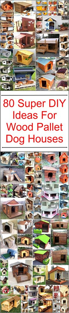 Here we are clearing this statements through the creation of wonderful and super DIY wooden pallet dog house. These all smartly designed and displayed dog houses are beautifully created to fulfill your dog houses needs in cheap and easy way. Have a look at this sophisticated designs of dog houses.  #pallets #woodpallet #palletfurniture #palletproject #palletideas #recycle #recycledpallet #reclaimed #repurposed #reused #restore #upcycle #diy #palletart #pallet #recycling #upcycling #refurnish