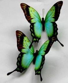 8 Green Pteris Butterfly Wedding Home Decoration 8cm | eBay