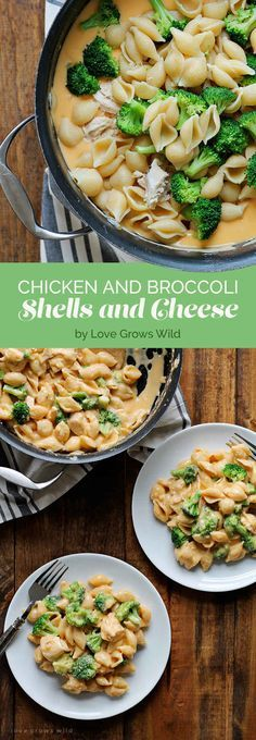 What You Should Eat For Dinner This Week Chicken and Broccoli Shells and Cheese.Chicken and Broccoli Shells and Cheese. Cheese Stuffed Shells, Le Diner, I Love Food, Food For Thought, Food To Make, Food Porn, Food And Drink, Cooking Recipes, Fast Recipes