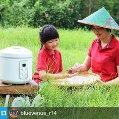 Alexa, putriku membantuku memilih beras yang akan dimasak di rice cooker Yong Ma kesayangan keluarga kami.
