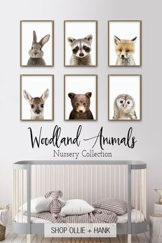Looking for the sweetest woodland nursery decor? Meet our adorable peek a boo woodland animals. These fun modern photo prints are highly detailed and compatible with any decor. The perfect gift for a baby shower or finishing touch to a nursery.