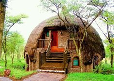 So cute. A thatched roof dome shaped house!