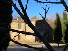 Rocio mañanero, una imagen muy típica en invierno en Can Bonet Costa, Canning, Winter, Home Canning, Conservation