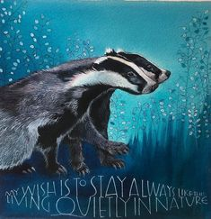 Sam Cannon, Whale, Badger, Picasso, Animals, Pencil Drawings, Colored Pencils, Hand Lettering, Inspiration