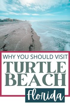 Siesta Key Florida, Siesta Key Beach, Florida Vacation, Florida Beaches, Vacation Trips, Florida Trips, Visit Florida, Sarasota Florida, Florida Keys