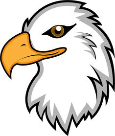 realistic eagle drawing bald eagle drawings the big birds of prey rh pinterest com eagle clip art black and white eagle clipart with banner