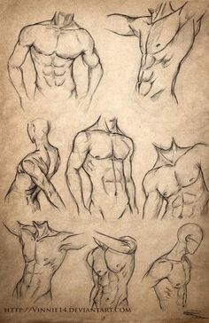 Body Sketches, Anatomy Sketches, Art Drawings Sketches Simple, Pencil Art Drawings, Character Sketches, How To Draw Sketches, Human Anatomy Drawing, Guy Drawing, Human Body Drawing