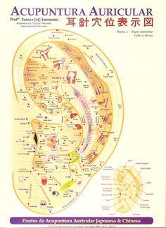 Cogitare Fisioterapia: Auriculoterapia