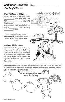 Ecology & Ecosystem Levels of Organization - Distance Learning + Digital Use this Ecology mini-bundle to introduce your ecology unit using differentiated vocabulary lessons and a creative drawing lesson as students create the levels of ecological organization. Includes DIGITAL GOOGLE CLASSROOM links!