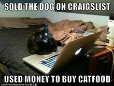 Never EVER Teach Your Cat How To Use Your Computer http://cheezburger.com/9027926016/craigslist-cat-sold-dog