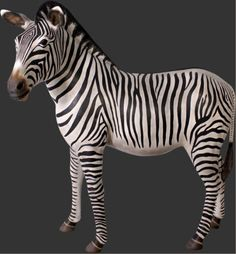 Zebras from Big Furry Friends - World's Largest Source of Luxury Handmade Animals