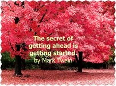 The secret of getting ahead is getting started.  ~ Mark Twain    What are your plans?