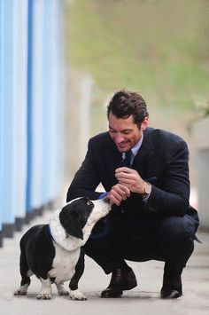 David y 'Bilbo Baggins' de Battersea Dogs & Cats Home #DavidGandy #BDCH