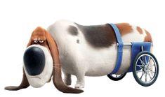 La Nuez: La vida secreta de las mascotas The Secret Of Pets, Love Pictures, Animal Pictures, Pets Movie, Disney Background, Pet 1, Bassett Hound, Pet Life, Mickey And Friends