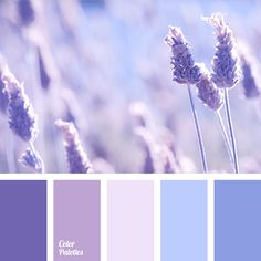 A light and fluffy color composition. Just as you fly up and live in the clouds, but there below cornflower fields are. Shades of blue, pink, lilac, light.