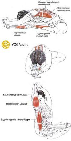10. Джану Ширшасана Высокое давление, менопауза, головная боль, усталость, депрессия, бессонница, нарушения в работе органов пищеварения и почек, запор, менструация.