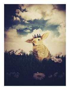 The Little Bunny Prince 8.5x11 Inch Print Easter by ThisYearsGirl
