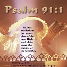 Abiding (dwell live  remain) under the Shadow of the Almighty is God's gift of rest and  promise of protection and safety to the believer....because he  dwells in the Secret Place of the Most High.  #Psalm91 #safety #rest  #protection #GodsDwelling