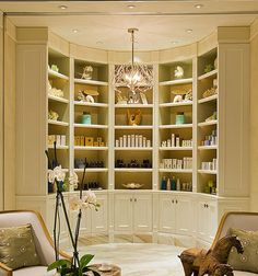 Curved bookcase! Love it!