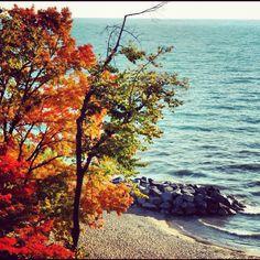 Fall on lake Michigan on my instagram @queenofjewels.   #icfall