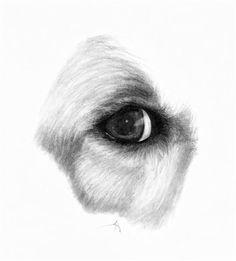 """Buddy"" - from my series ""Puppy Dog Eyes"""