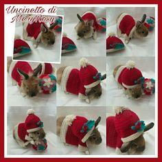 Vestitino natalizio per coniglio nano lavoro all'uncinetto Christmas dress for dwarf rabbit crochet work #vestitino #vestito #coniglio #conigliettonano #coniglietto #rabbits #rabbit #coniglionano #uncinetto #crocheted #crochet #handmade #fattoamano #diy #natale #natalizio #christmas #dress