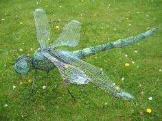 Steel rod and wire Insect sculpture by artist Fiona Campbell titled: 'Dragonfly'