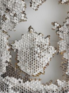 SUBJECT MATTER: Honeycomb, bees, muted colors, life, texture, pattern, shape, repetition, geometric