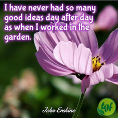 Gardening DIY Videos Recycle - In The Gardening Drawing - - Garden Works, Love Garden, Shade Garden, Garden Plants, Fairy Gardening, Sacred Garden, Therapy Quotes, Plants Quotes, Garden Quotes