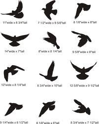 outlines of flying birds - Google Search