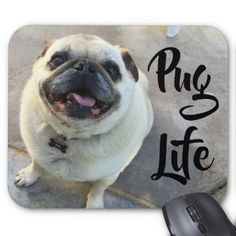 Shop Adorable Smiling Pug Dog Pug Life Mouse Pad created by MiscellanyShop. Personalize it with photos & text or purchase as is! Best Dog Photos, Cute Dog Photos, Funny Dog Pictures, Pug Photos, Teacup Pug, Animals And Pets, Cute Animals, Pug Puppies, Pug Love
