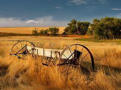 Leland D Howard - Rural Gold