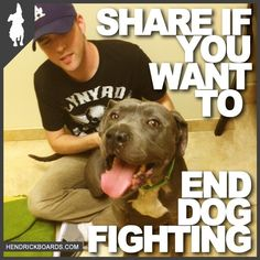 I'd love to put the owners through the same pain as the dogs. Help stop dog fighting!