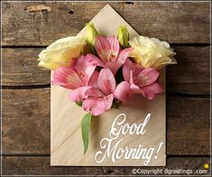 Good Morning Messages, good morning Wishes Good Morning Posters, Good Morning Meme, Good Morning Picture, Good Morning Wishes, Good Morning Sister Images, Good Morning Angel, Morning Board, Good Morning Greeting Cards, Morning Greetings Quotes