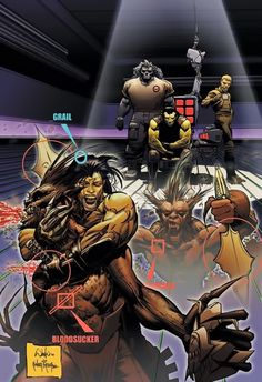 WetWorks WildStorm