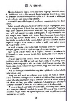 MESÉLŐ SZÖVEGÉRTÉSI MUNKAFÜZET 2. OSZTÁLY - tanitoikincseim.lapunk.hu Teaching, Education, Words, Dyslexia, Learning, Educational Illustrations, Teaching Manners, Studying
