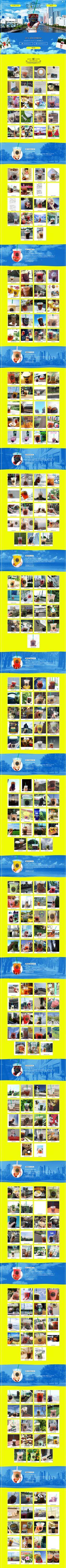 そと夏タリーズ【飲料・お酒関連】のLPデザイン。WEBデザイナーさん必見!ランディングページのデザイン参考に(派手系) Web Design, Web Banner Design, Site Design, Design Campaign, Website Layout, Landing Page Design, Layout Inspiration, Page Layout, Magazine