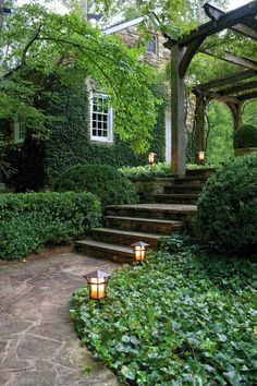 Lovely garden path & lighting!