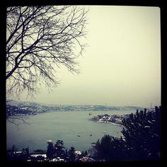 Boğaziçi üniversitesinden doğal İstanbul!