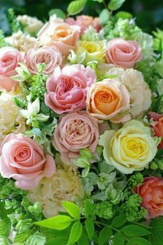 Pale peach, pink, and yellow rose bouquet. Beautiful Flower Arrangements, Love Flowers, Amazing Flowers, Beautiful Roses, Floral Arrangements, Wedding Flowers, Fresh Flowers, Exotic Flowers, Purple Flowers