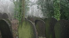 27 Places Straight Out Of Nightmares: Wardsend Cemetaray, UK. Site of many creepy legends.