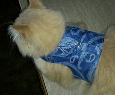 Check out this item in my Etsy shop https://www.etsy.com/listing/201729640/pet-harness-blue-paisley