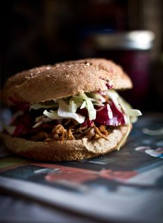 Pulled pork sandwich… Fido will be begging at your feet for this cookout dish.