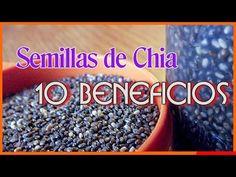 La Semilla De Chia - Los 10 Mejores Beneficios para la Salud de la Semilla de Chia - YouTube