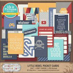 LIP Pocket Card Kit: