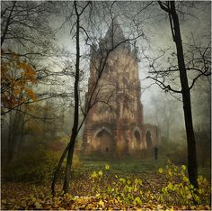Not only a beautiful place, but what a beautiful image. Mystical Forest Castle, Romania photo via magicalnaturetour Castle In The Sky, Beautiful Castles, Beautiful Places, Beautiful Forest, Oh The Places You'll Go, Places To Visit, Mystical Forest, Famous Castles, Abandoned Places