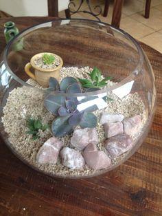 Mini terrario dentro de un terrario con plantas suculentas Casaluna Terrarium y mini jardines
