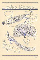 Les animaux 89 (3546657319) Les Paons.jpg